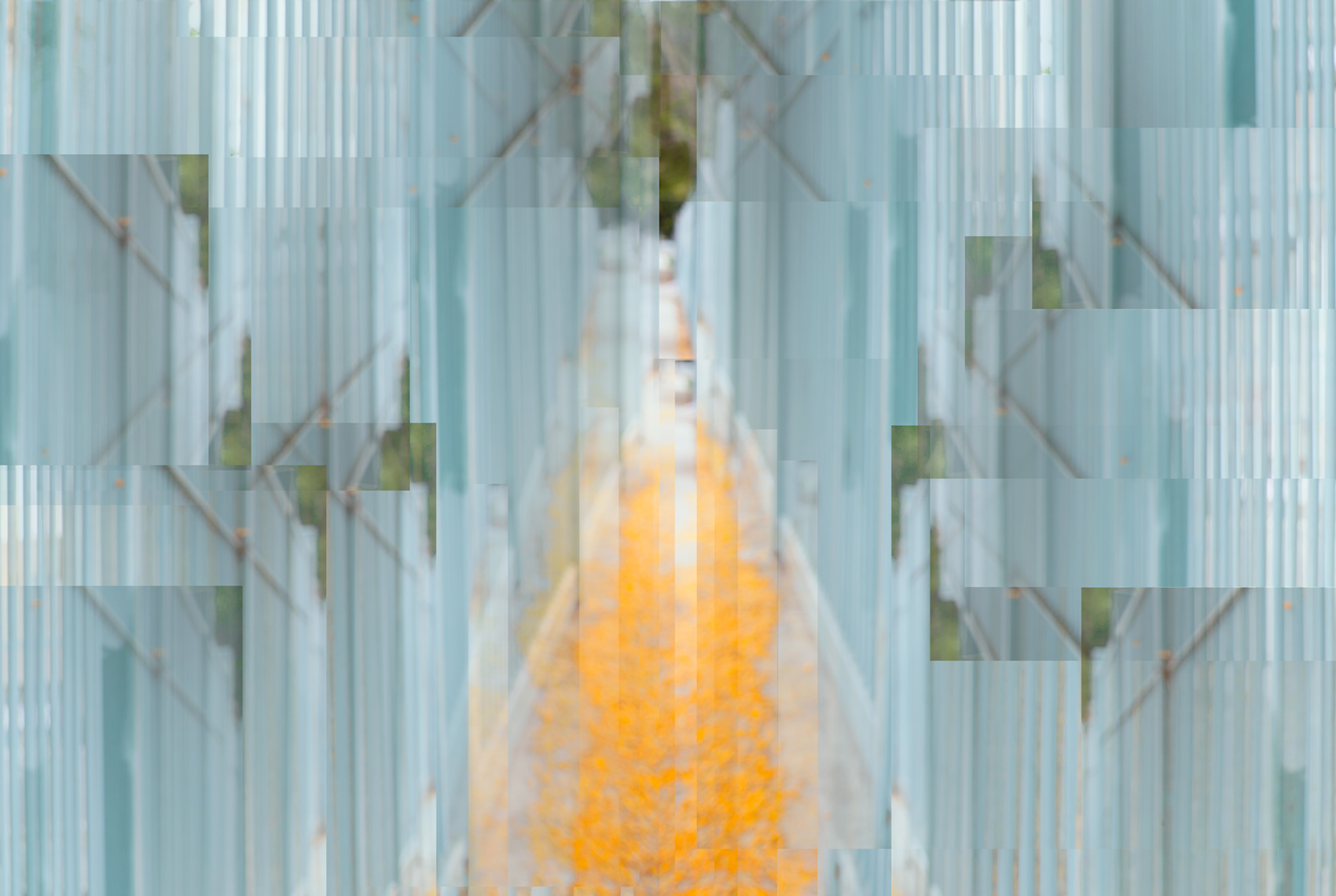 Golden Path to Happiness, 2015